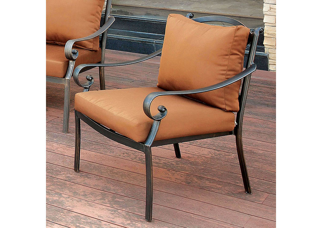 Bonquesha Distressed Black Aluminum Patio Chair,Furniture of America
