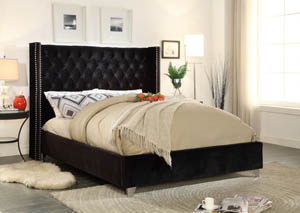 Aiden Black Velvet Full Bed