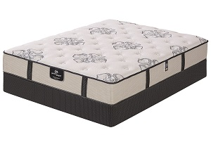 Perfect Sleeper Bookert Trace Plush Queen Mattress