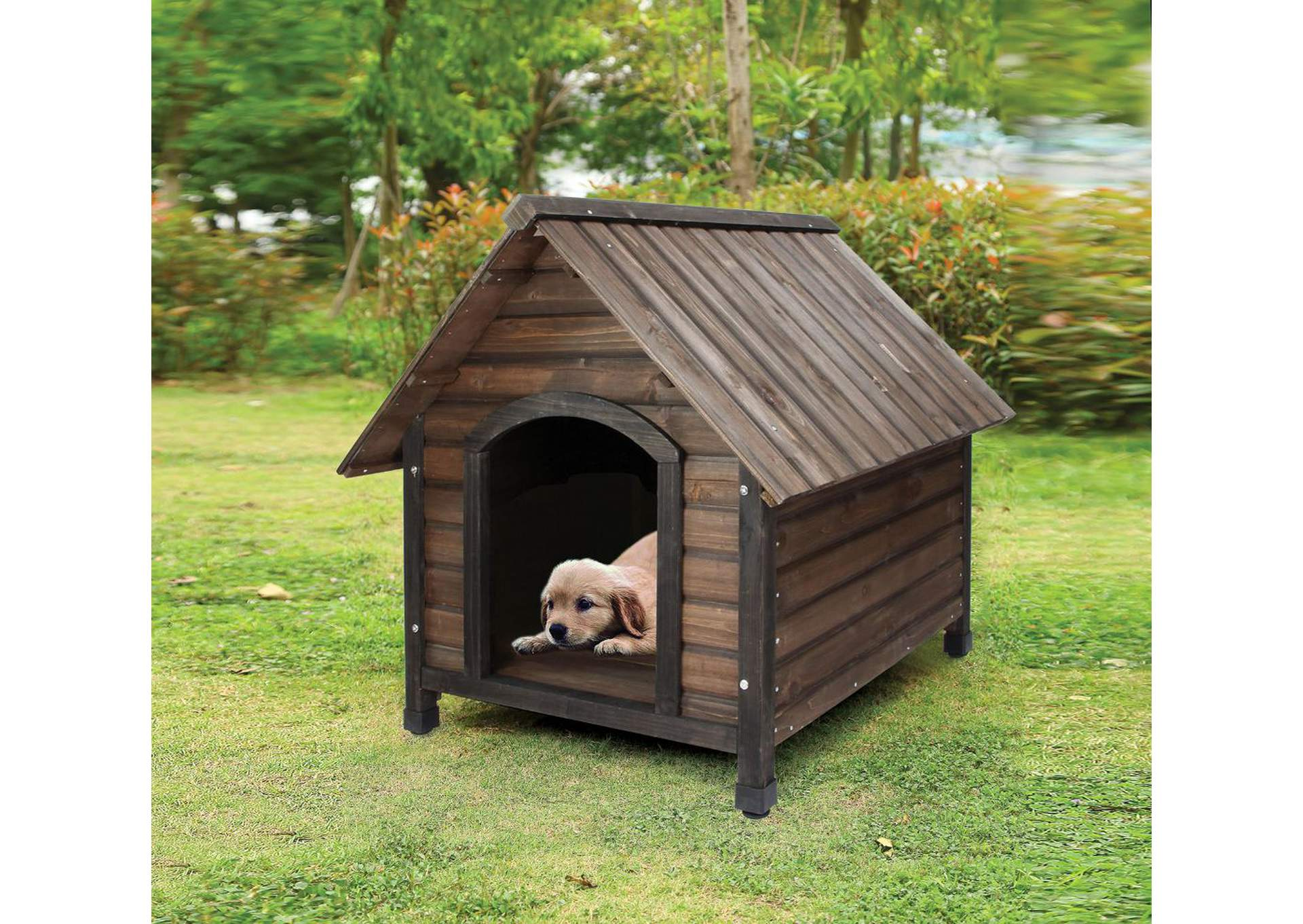 Woody Oak Pet House,Acme