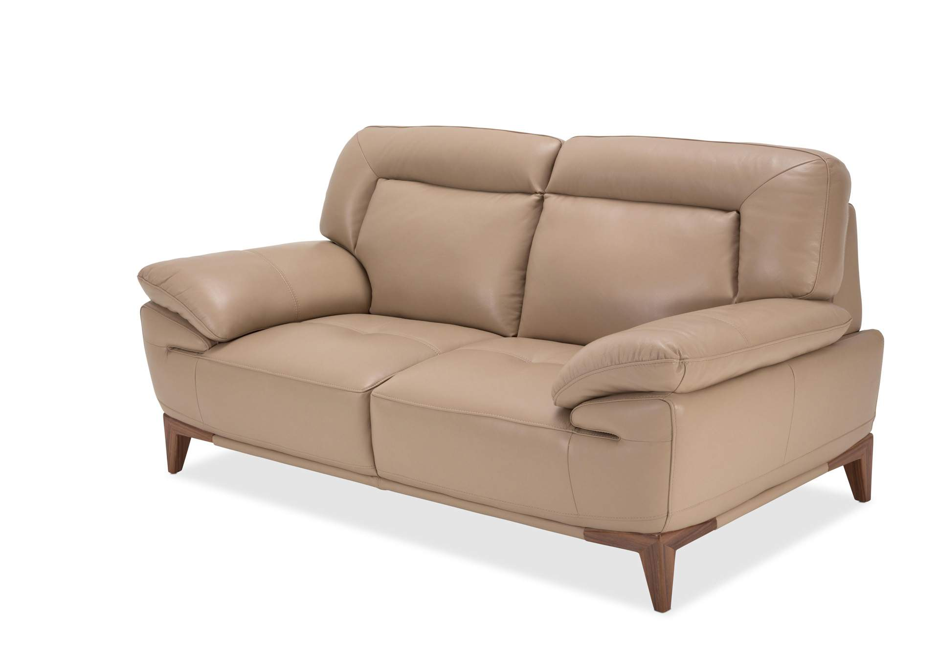 Nulook Furniture Turano Taupe Leather Loveseat