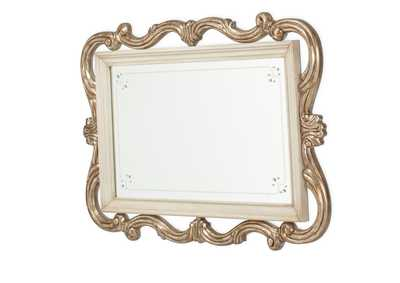 Platine de Royale Champagne Wall Mirror