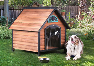 Harlowton Brown/Black/Blue Pet House