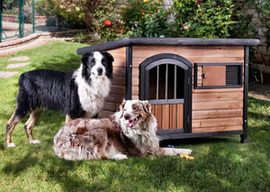 Carthage Large Brown/Black Pet House