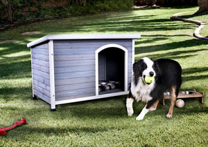 Cando Medium White/Gray Pet House