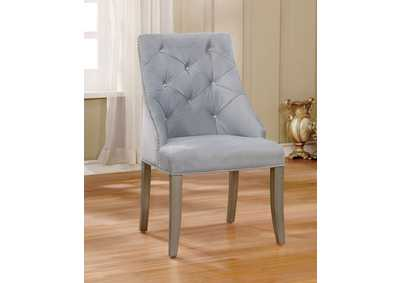 Diocles Light Gray Side Chair (Set of 2)