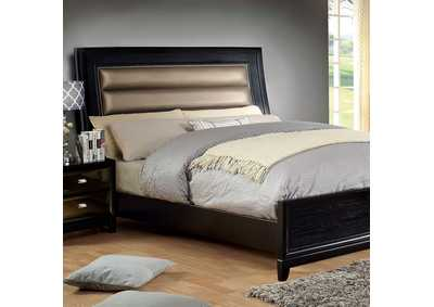 Golva Black & Gold Upholstered Platform Queen Bed