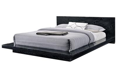 Christie Black Lacquer Low Profile Queen Bed