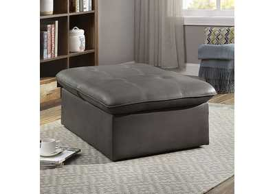 Luken Grey Futon Chair