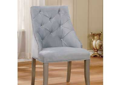 Image for Diocles Light Gray Side Chair (Set of 2)