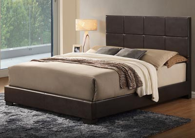 Brown Gloss Queen Platform Bed