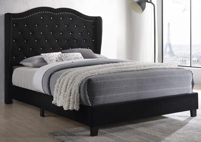 Darby Black Upholstered Panel Twin Bed