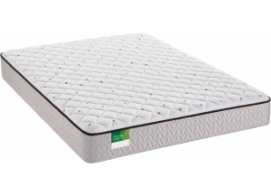 Image for Sealy Queens Guard Plush Twin Mattress