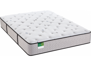 Image for Sealy Royal Ascot Cushion Firm Twin Mattress