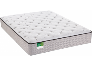 Image for Sealy Knighthood Plush EPT Twin Mattress